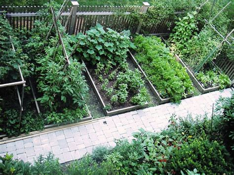 Vegetable Garden Ideas For Small Yards 86 Best Images About Vegetable Garden Ideas On