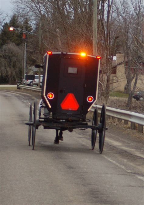 Being More Visible Is No Accident Roadkill Crossing Amish Lights