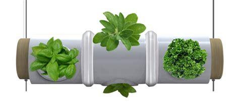 kitchen herb garden design hanging kitchen herb garden doubles as light fixture