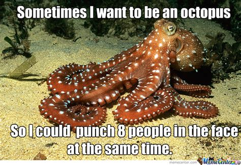 Octopus Meme - octopus power by domae meme center