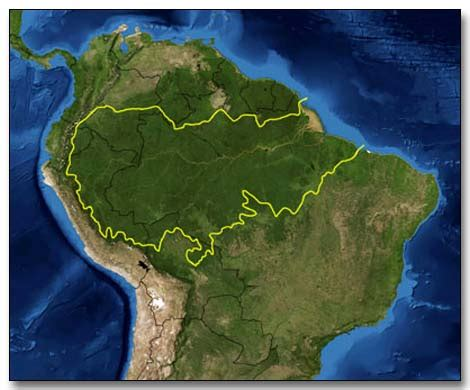 rainforest map brazil map of rainforest images