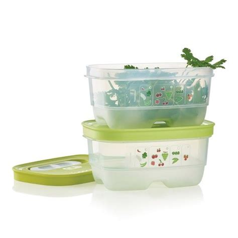 Tupperware Mini Container 700 best tupperware products on sale images on