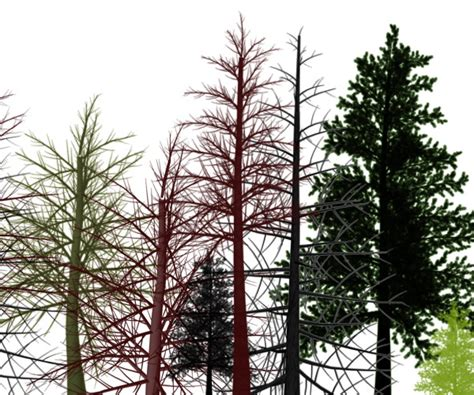 tree pattern brush 4 designer clear trees ps brushes 1
