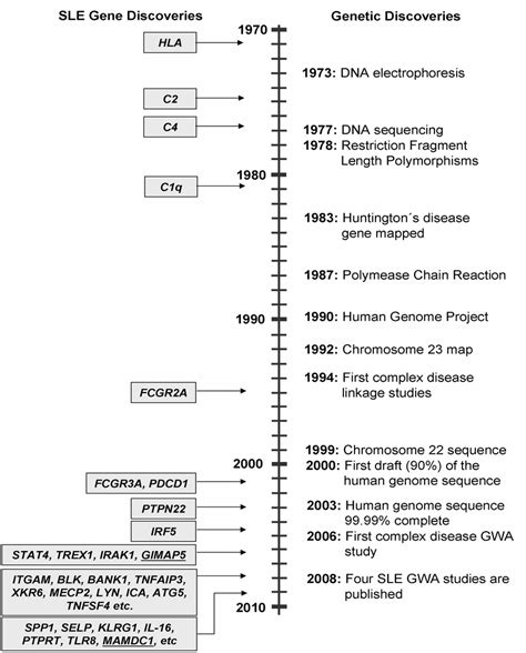 sle timeline a timeline of discoveries in human genetics right and