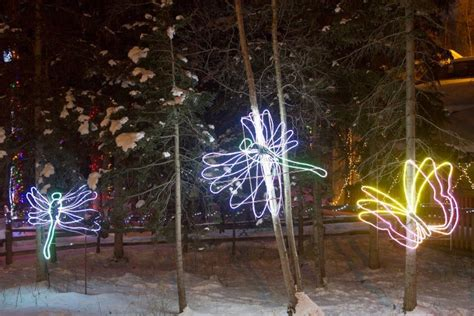 Here Are The 9 Best Christmas Displays In Alaska Anchorage Zoo Lights