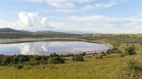 queen elizabeth national park uganda queen elizabeth national park queen elizabeth national park safari budget kombi tours