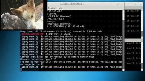 kali linux mitm tutorial kali linux man in the middle attack arpspoofing driftnet