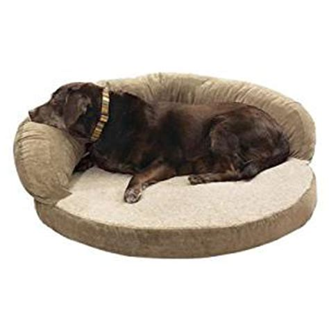 amazon dog beds amazon com 50 therapeutic dog bed pet beds pet supplies