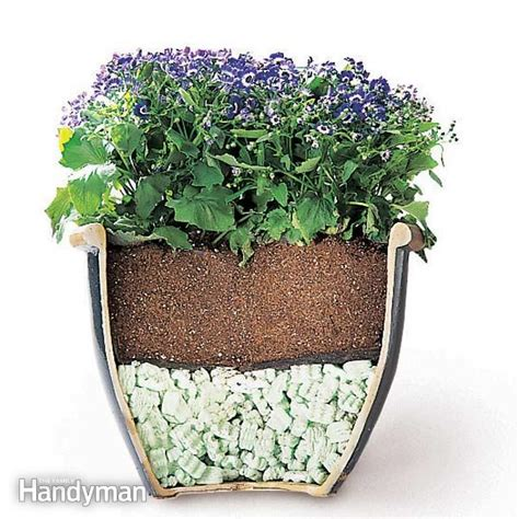 Plants For Planters by Tips For Moving Heavy Potted Plants The Family Handyman