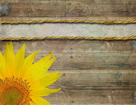 blank sunflower pictures for business card template invitation archives decorating of