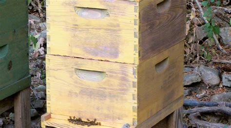 building a langstroth beehive