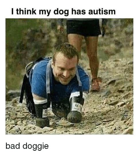 i think my has autism 25 best memes about i think my has autism i think my has autism memes