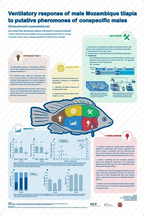 templates for scientific posters best 25 scientific poster design ideas on