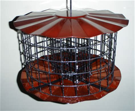 tmb studios squirrel starling proof suet feeder copper