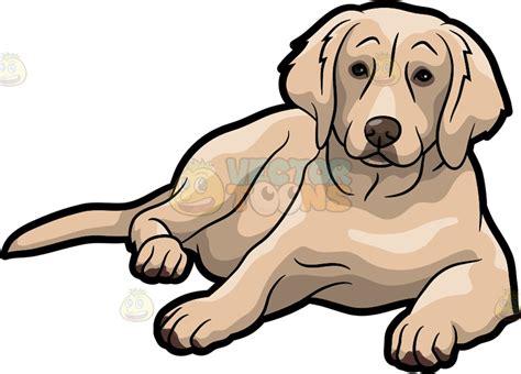 golden retriever clipart an adorable golden retriever pet vector clip