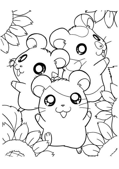 free coloring pages of a cute hamster