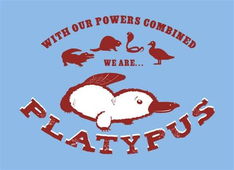 duck billed platypus venn diagram 105 best images about platypuses on