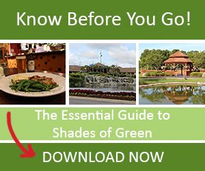 the essential guide to shades of green 2018 your guide to walt disney world s resort books shades of green s new years the essential guide to