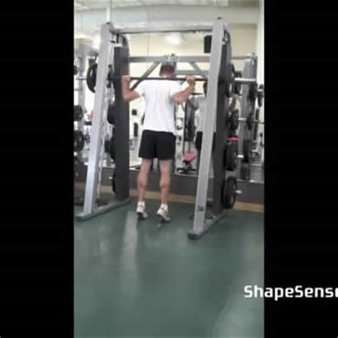 smith machine seated calf raise smith machine calf raise shapesense