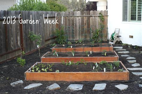 Zone 9 Gardening by Best 25 Zone 9 Gardening Ideas On Zone