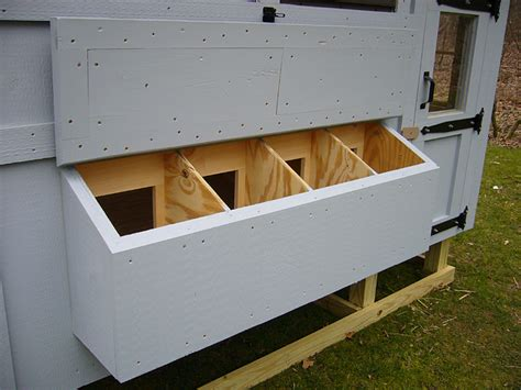 6 considerations for building chicken coop nesting boxes