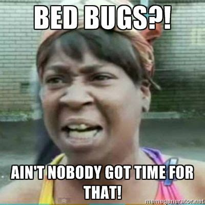 Bed Bug Meme - bed bugs ain t nobody got time for that bedbugs funny