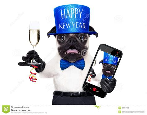 happy new year puppy happy new year merry happy new year 2018 quotes