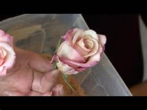preserving flowers how to preserve a bouquet of flowers
