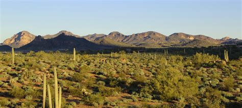 Detox Stores In Tucson by Cottonwood Tucson Reviews Cost Complaints