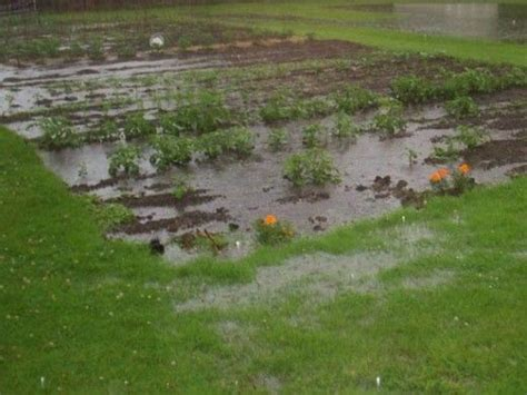 how to stop my backyard from flooding 33 best images about drainage problems solutions on