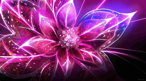 wallpaper abstract colorful flower abstract flowers wallpaper
