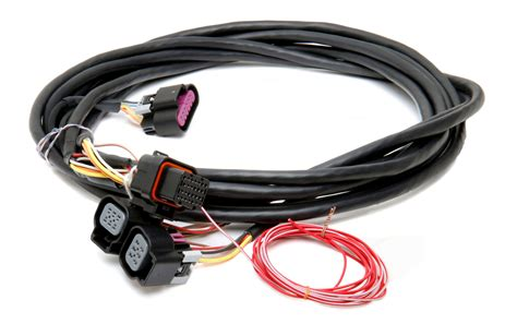 holley efi 558 411 dominator efi gm dual drive by wire