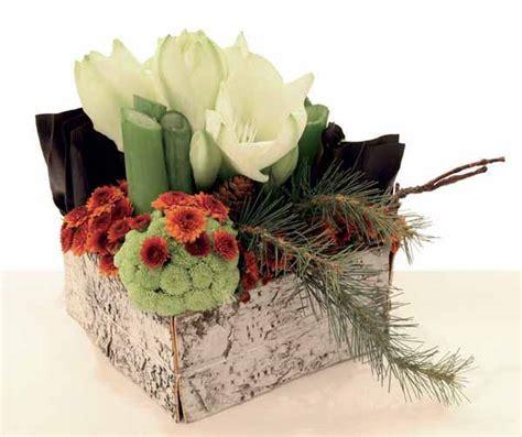 come curare le roselline in vaso giardinaggio un centrotavola di natale particolare