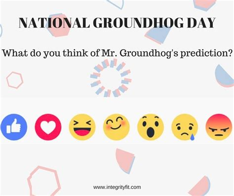 groundhog day vf groundhog day