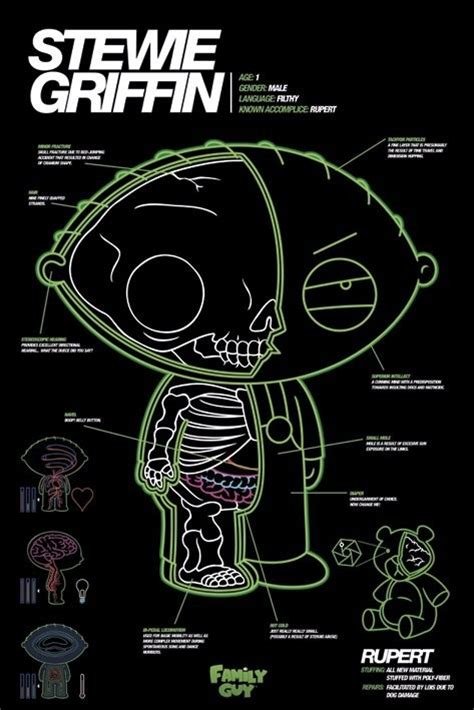 x ray poster design family guy stewie x ray poster sold at europosters