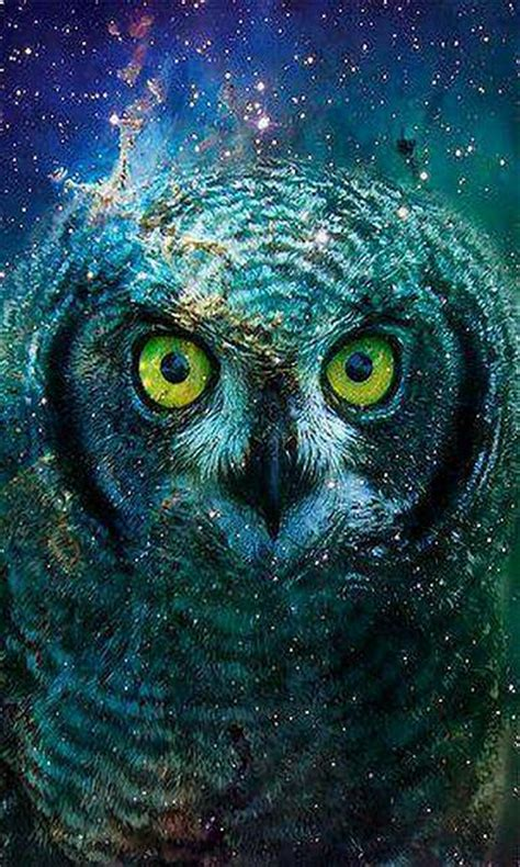 abstract owl wallpaper post your latest start screen backgrounds page 48