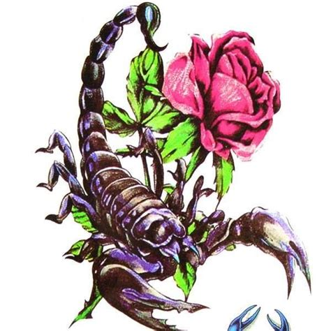 scorpion rose tattoo designs scorpion with tattoos search tattoos