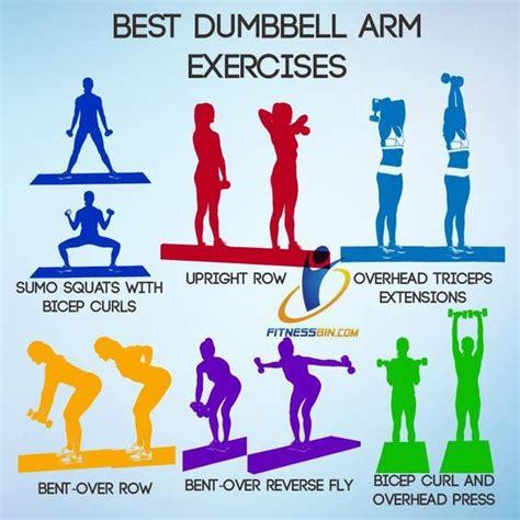 best dumbbell arm exercises more fitness