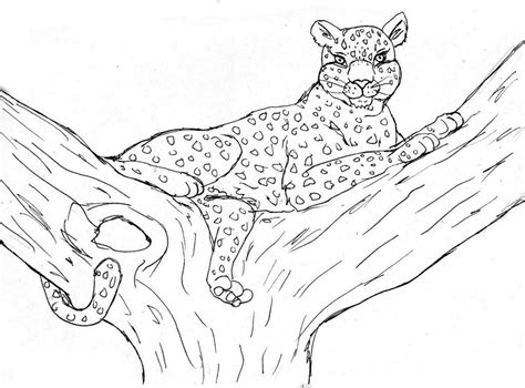 printable coloring pages free printable cheetah coloring pages for