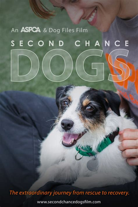 second chance puppies dogs rescued given second chance in new aspca bark and swagger