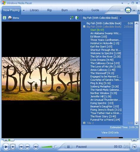 dvd format windows media player file format will play cd player download free