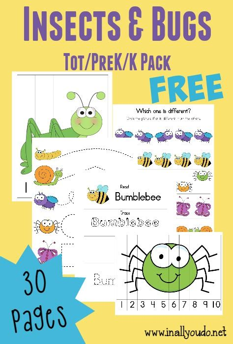 Preschool Insect Theme Printables