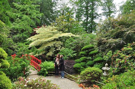 jardin botanique de haute bretagne wikip 233 dia