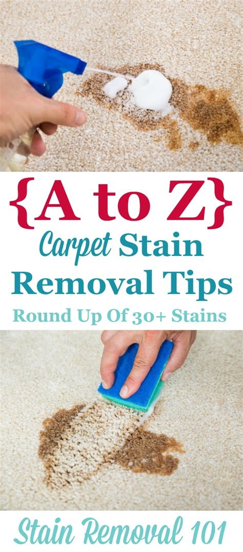10 Best Stain Removal Tips by A Z Carpet Stain Removal Tips
