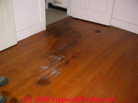 pet stains marks in buildings a diagnostic guide to