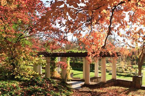 fall garden nc gradini de toamna un mozaic de culori forme si miresme