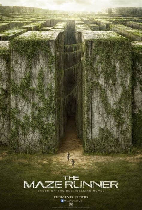 film maze runner tentang apa kritikus film gadungan the maze runner 2014 review