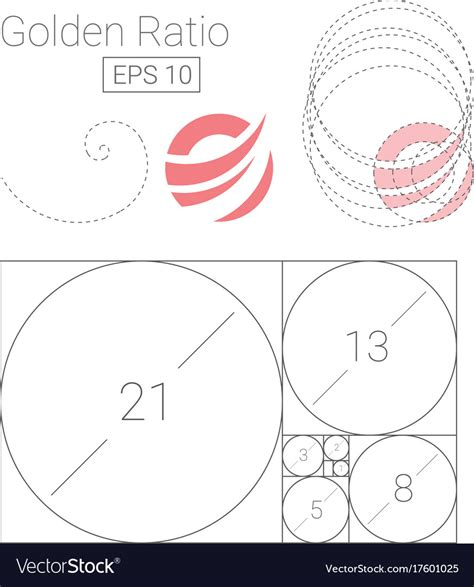 Golden Ratio Template Logo Fibonacci Royalty Free Vector Golden Ratio Design Template