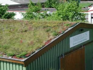 Garten Landschaftsbau Emsdetten by Dinkels Gmbh Dachbegr 252 Nung