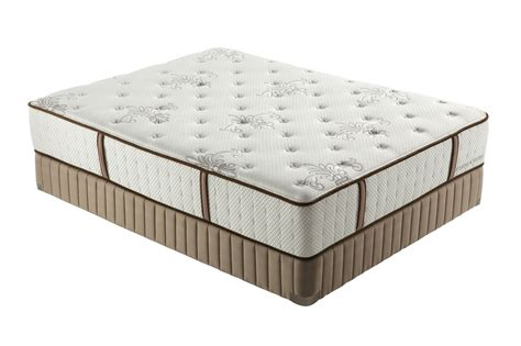 Stearns And Foster Mattress Warranty by Stearns Foster Violeta Ultra Firm Mattresses